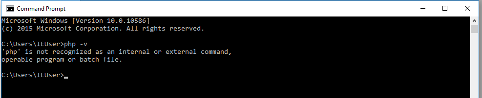 php command not found